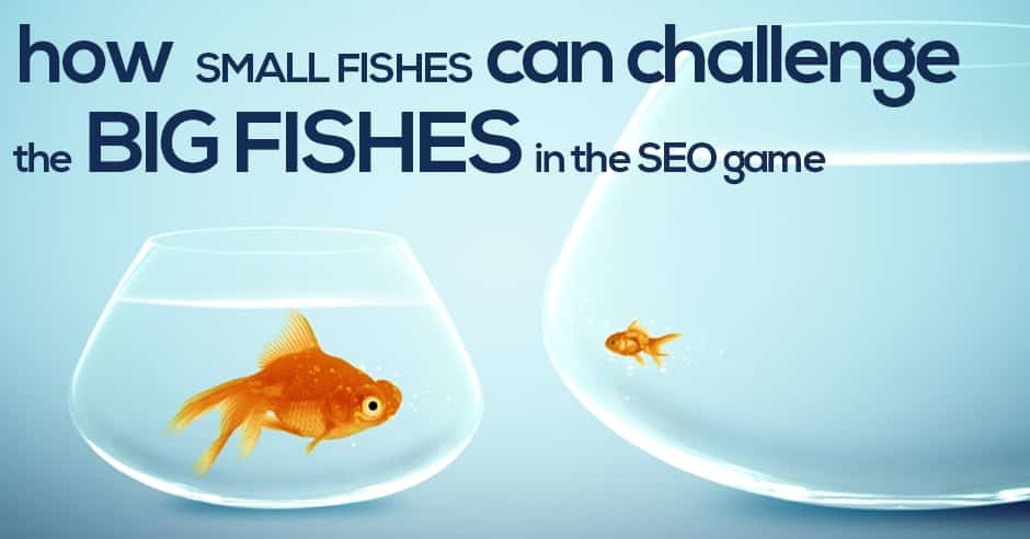How Small Fishes Can Challenge the Big Fishes in the SEO Game