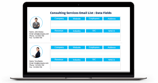 Consulting Services Email List